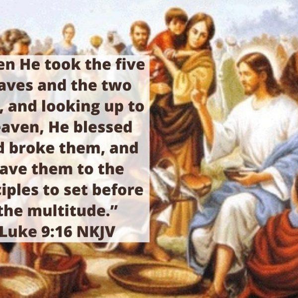 """Pray as though everything depended on God. Work as though everything depended on you."" – St. Augustine #staugustine #bible #sunday #joy #love #peace #happiness #jesus #multitude #feedingfivethousand #miracle #sunday #gospel #love #joy #biblereadings"
