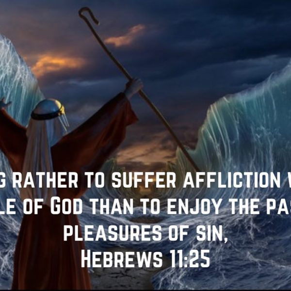 + Virtue is not accounted virtue if it is not accompanied by difficulty and labors. That is why all those who live in the fear the Lord will suffer affliction. – Sf. Isaac the Syrian #christian #copticorthodox #patience